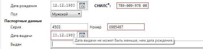 Пример ошибочно введенных данных
